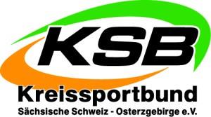 ksb_logo_heller_untergrund-300x167